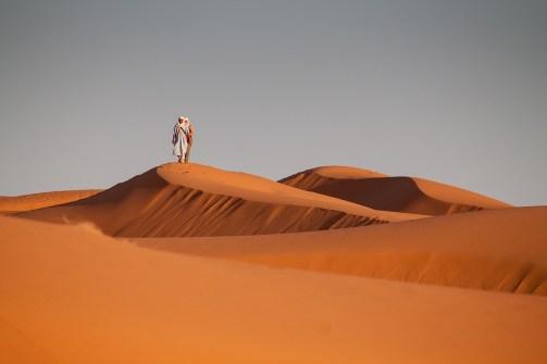 desert-1101123_1280