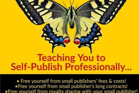 Learn to Self-Publish Professionally & Affordably! Hands-On Training?