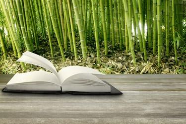 book in bamboo grove