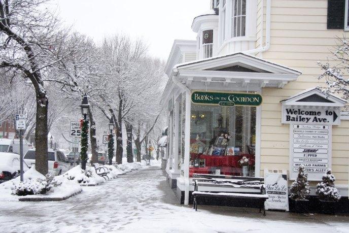 Bookstore-in-Winter-1-Optimized