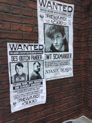 WANTED: Newt Scamander