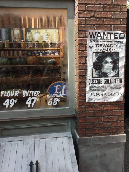 WANTED: Queenie Goldstein
