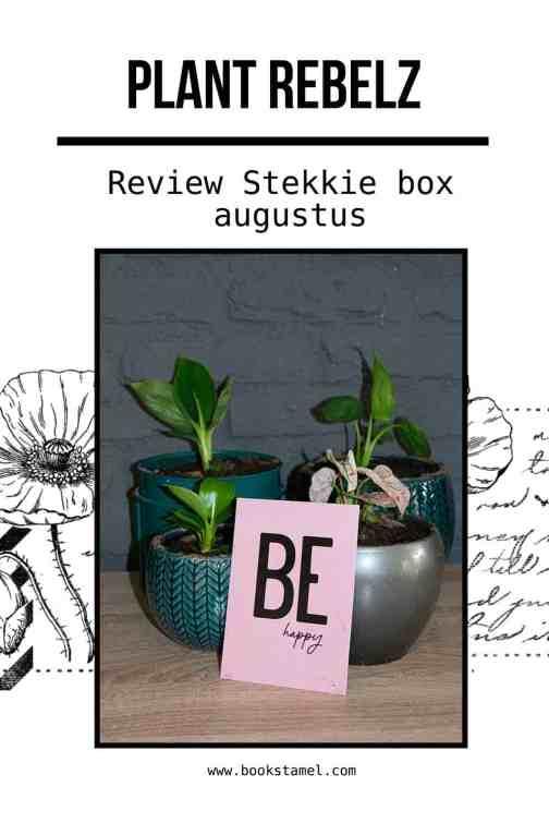Stekkie-pin