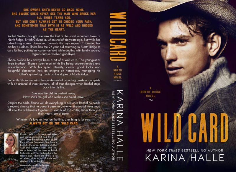 Image result for wild card karina halle