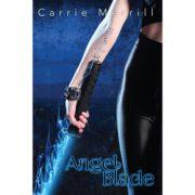 Angel Blade: Book 1 Angel Blade Series