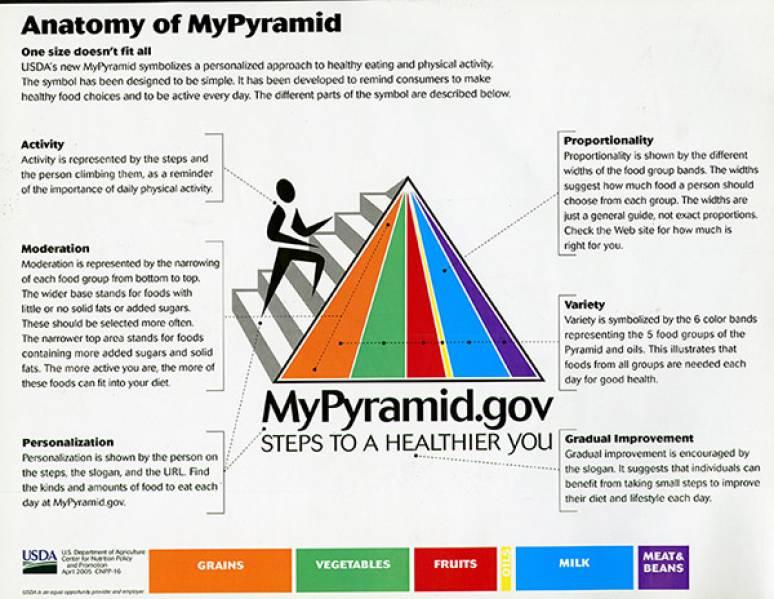 Anatomy of MyPyramid (Paper Sheet)   U.S. Government Bookstore