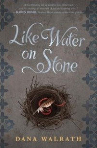 book cover of Like Water On Stone by Dana Walrath published by Delacorte Press
