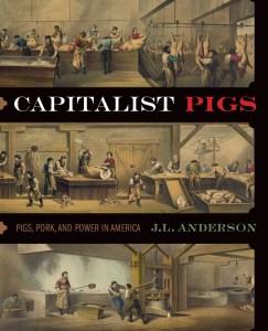 andereson_capitalist_des_cov_mocks_0041