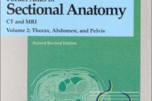Pocket Atlas of Sectional Anatomy, Vol. II pdf