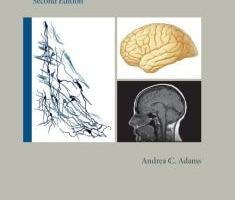 Download Mayo Clinic Essential Neurology 2nd Edition PDF