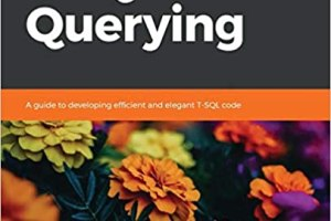 Learn T-SQL Querying PDF
