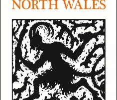 Welsh Mythology: Folklore & Legends of North Wales By Rev. Elias Owen