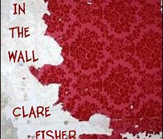 The Hole in the Wall By Clare Fisher