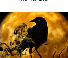 Darkness Risen - The Torcher By Richard Shekari