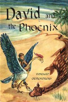 David and the Phoenix By  Edward Ormondroyd Pdf