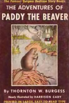 The Adventures of Paddy the Beaver By Thornton Pdf