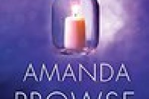 My Book Review THE ART OF HIDING by Amanda Prowse