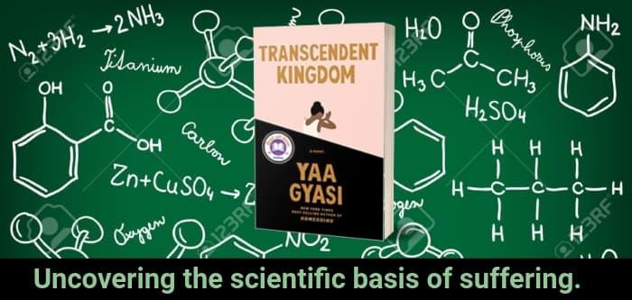 """Transcendent Kingdom"" by Yaa Gyasi (Header image)"
