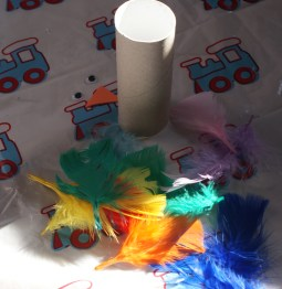 Toilet roll parrot materials