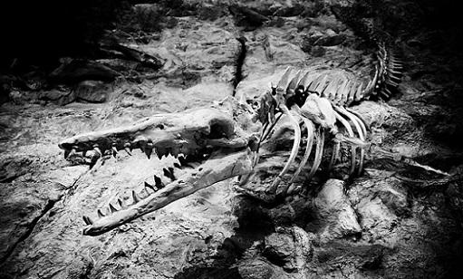 恐竜の絶滅