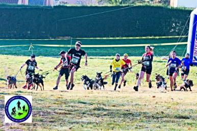 Campeonato de Asturias de Mushing (Canicross)