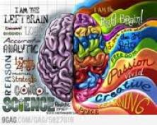 If I could just get my left and right hemispheres t communicate, I could be so much more productive.