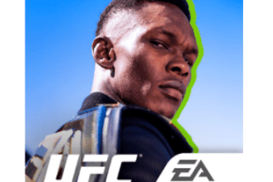 UFC for PC