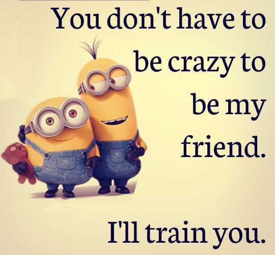 Funny Friendship Quotes   You don't have to be crazy   BoomSumo Quotes