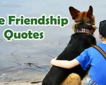 Top 5 True Friendship Quotes