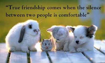 True friendship comes comfortable - True friendship quotes