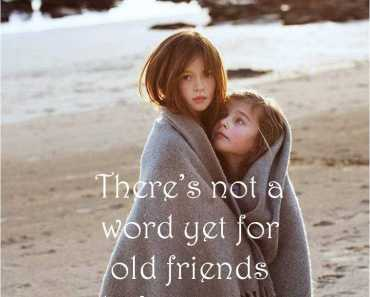 old friends quotes who've just met