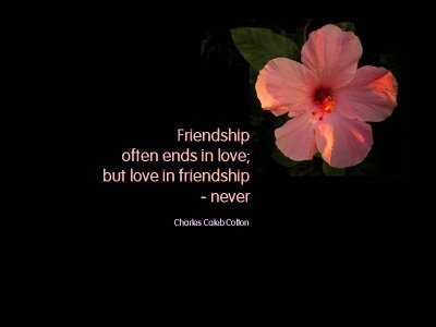 Friendship Quotes Ends In Love