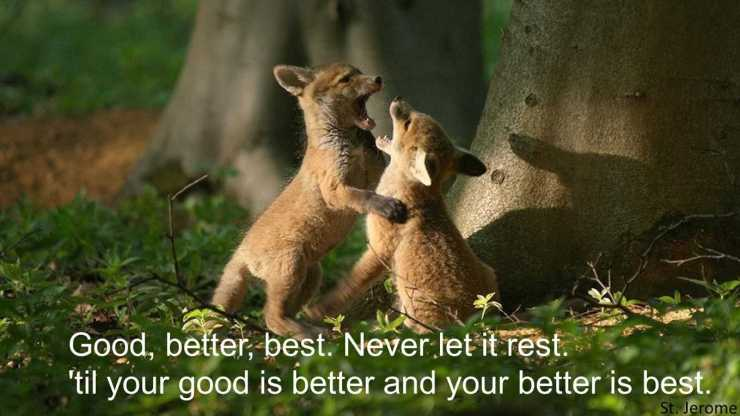 Never let it rest - Motivational Quotes