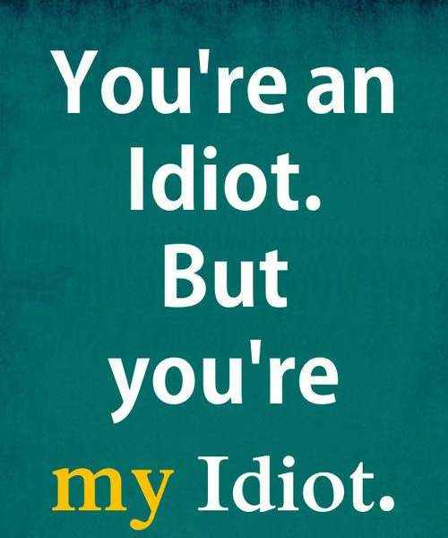 Cute Relationship Quotes Youre An Idiot My Idiot