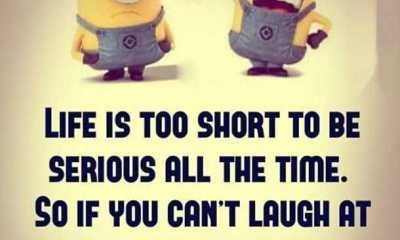 Funny Sayings are Scarier than Make You Love funny phrases Life Quotes