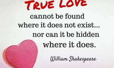 Inspirational Quotes about life and love True Life quotes
