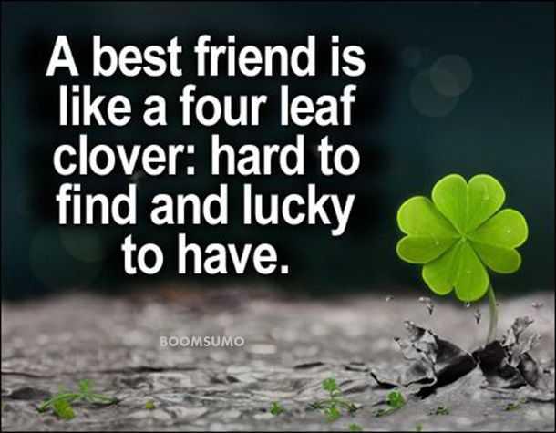 best friends forever quotes about four leaf cute friend captions