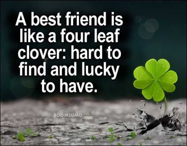 Superior Best Friends Forever Quotes About Four Leaf Cute Friend Captions