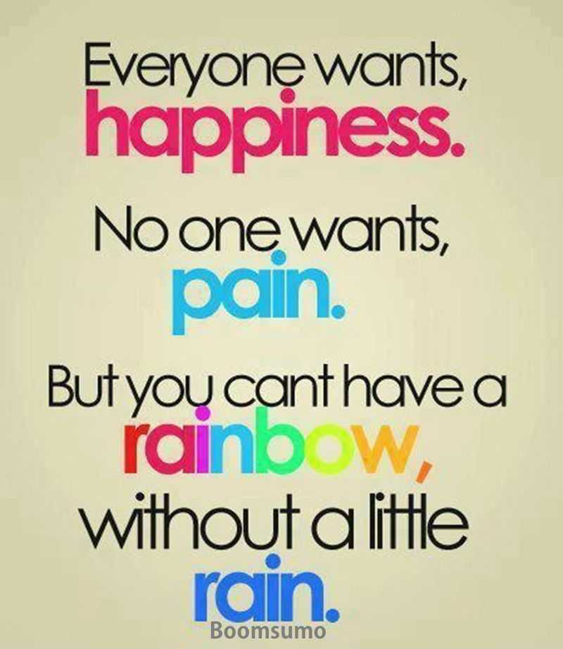 A Quote About Happiness Fascinating Life Quotes Everyone Wants Happiness The Way You Plan But The Pain