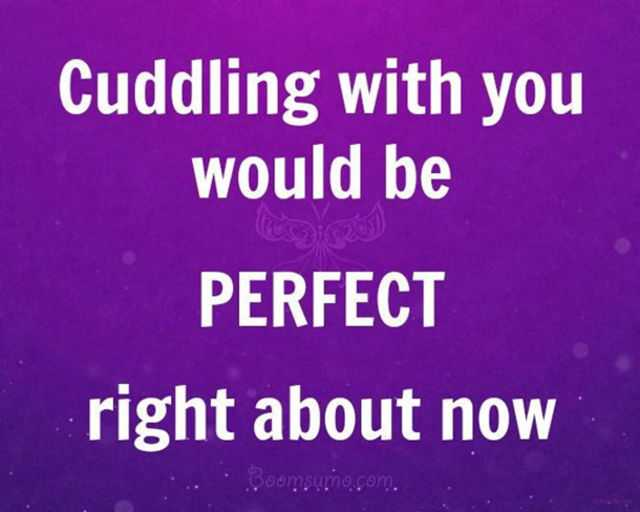 Cute Love Quotes From The Heart You Would Be Perfect Now Sweet Love Quotes