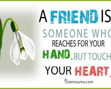 Heart Touching Quotes About Friends Touches Your Heart best friends forever quotes