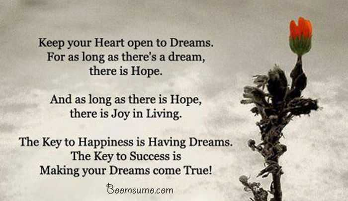 Dreams Quotes About Achieving Success 'Dreams Come True