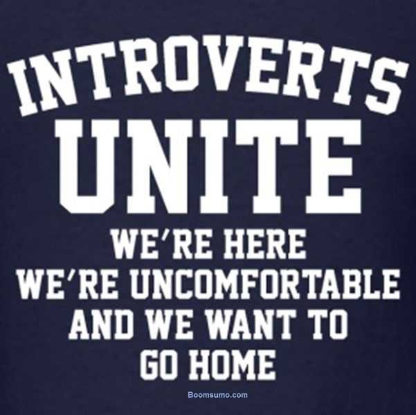 50+ Quotes For Introverts