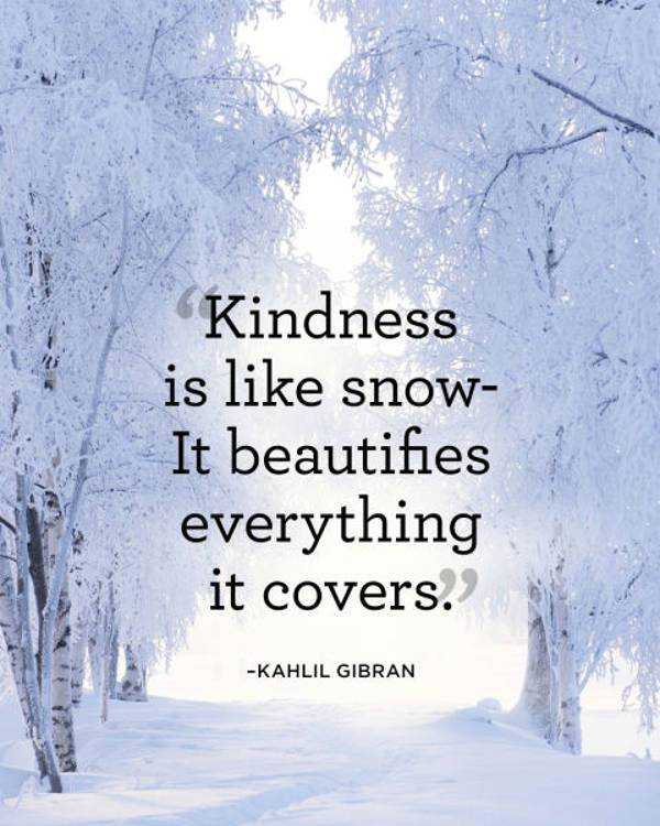 Beautiful Kindness Quotes If You Give You Can Seen Beautifies