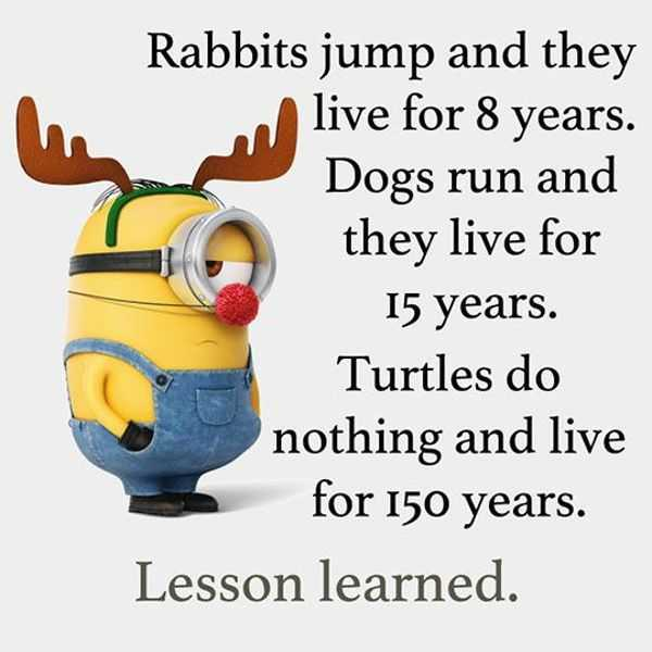 Image of: Inspirational Quotes Cool Funny Quotes do Nothing Live 150 Years Funny Phrases Boomsumo Quotes Cool Funny Quotes