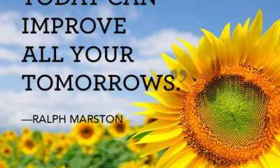 Inspirational quotes about Positive thoughts Today What You Do Improve It
