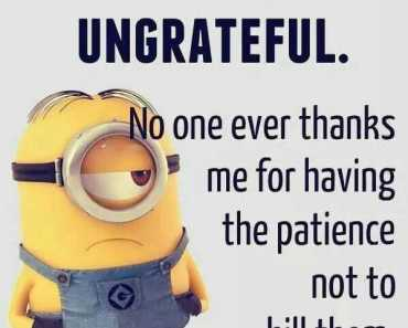 Minions Quotes Funny Sayings People Are So Ungrateful funny inspirational quotes