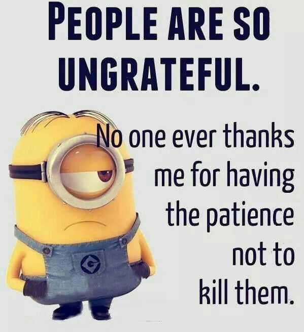 Minions Quotes Funny Sayings People Are So Ungrateful No Patience I Kill Them