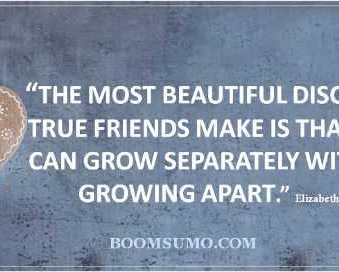 friends quotes true friends Never Push Away Quotes About Friendship