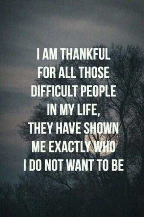 Funny Inspirational Quotes Mesmerizing Funny Inspirational Quotes About Life Lessons I Don't Want To Be
